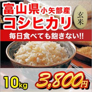 koshihikari10-g