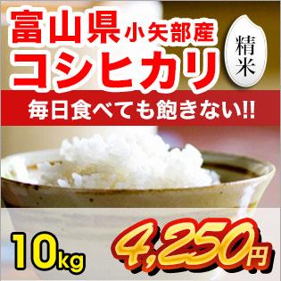 富山県産コシヒカリ 精米10kg