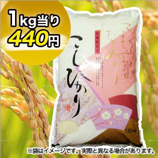 富山県産コシヒカリ 精米5kg