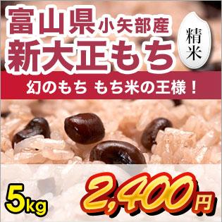 富山県産新大正もち 精米5kg