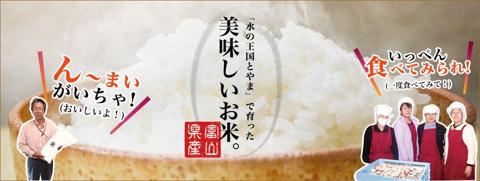「水の王国とやま」で育ったおいしいお米