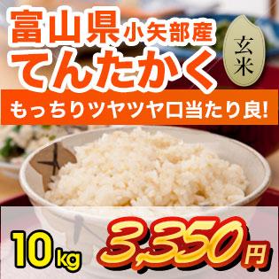 富山県産てんたかく 玄米10kg